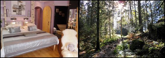 Séjour Vosges au Domaine du Haut Jardin