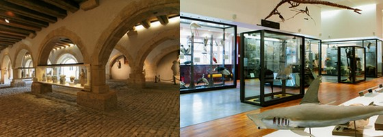 Musées en Lorraine