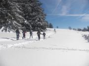 Séjour Raquettes à Neige Vosges et Spa au Tholy 88530 Le Tholy du 06-01-2017 à 17:00 au 12-03-2017 à 13:00