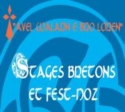 Festival Avel Walarn E Bro Loren à Nancy 54000 Nancy du 01-04-2017 à 09:30 au 02-04-2017 à 12:30