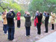 Stage Qi Gong au Chalet Nature Le Tholy