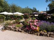 Séjour Ascension dans les Vosges Cueillette et Gastronomie 88640 Rehaupal du 25-05-2017 à 15:30 au 27-05-2017 à 20:00