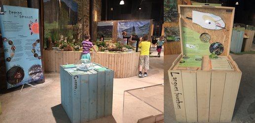 Exposition Amphibiens et Reptiles
