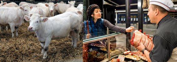 Rencontres made in viande 2018 Lorraine