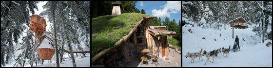 Hébergements Insolites Vosges Cabanes dans les Arbres Bol d'Air
