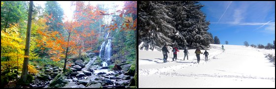 Chalet d'Hôtes Nature et Ressourcement au Tholy dans les Vosges Raquettes Neige