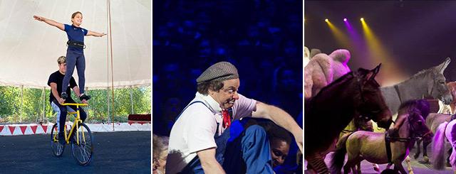 Tournée Cirque Arlette Gruss Excentrik Nancy Lorraine 2020