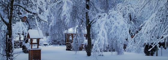 Séjour à la Montagne dans les Vosges au Domaine du Haut Jardin