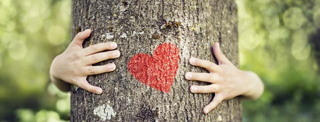 Offrir un arbre pour la Saint-Valentin 2020