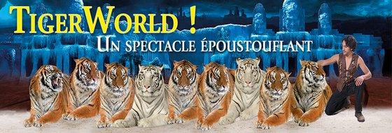 Tiger World 2015 Zoo Amnéville