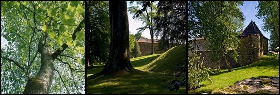 Prieuré du Parc de Cons-la-Grandville