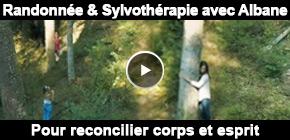 Sylvothérapie Vosges
