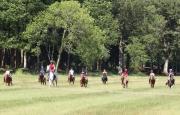Journée du cheval à Falck 57550 Falck du 21-09-2014 à 12:00 au 21-09-2014 à 16:00