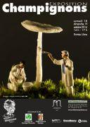 Exposition Champignons au Jardin Botanique du Montet 54600 Villers-lès-Nancy du 18-10-2014 à 12:00 au 19-10-2014 à 15:00