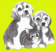 Salon ANIMALIA à Metz : chiots, chatons... 57000 Metz du 03-01-2015 à 08:00 au 04-01-2015 à 16:30