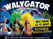 Nocturne Walygator le 15 Août Feu d'Artifice 57210 Maizières-lès-Metz du 15-08-2015 à 09:00 au 15-08-2015 à 21:00