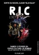 Concert R.I.C Reggae Dance Rock à Rombas 57120 Rombas du 13-02-2016 à 18:00 au 13-02-2016 à 20:00