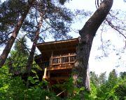 Hébergement Insolite Cabane Luxe Nids des Vosges 88640 Champdray du 01-04-2017 à 09:00 au 31-12-2017 à 23:59