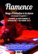 Stage de Flamenco à Nilvange 57240 Nilvange du 30-09-2017 à 14:00 au 01-10-2017 à 16:00