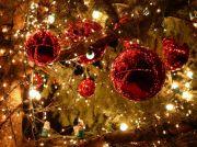 Animations et Marché de Noël à Lunéville 54300 Lunéville du 09-12-2017 à 12:00 au 07-01-2018 à 17:00