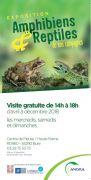 Exposition Amphibiens et Reptiles de nos Campagnes à Bure 55290 Bure du 01-07-2018 à 14:00 au 18-12-2018 à 18:00