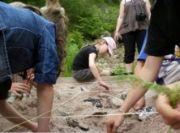 Journées de l'Archéologie Hautes-Mynes Le Thillot 88160 Le Thillot du 16-06-2018 à 14:00 au 16-06-2018 à 18:00