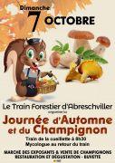 Journée de l'Automne et du Champignon à Abreschviller 57560 Abreschviller du 07-10-2018 à 08:30 au 07-10-2018 à 15:00