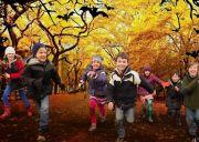 Animations Enfants Vacances Toussaint Ouest des Vosges 88300 Neufchâteau du 23-10-2018 à 14:30 au 04-11-2018 à 17:30
