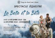 Spectacle Équestre à Benney Ménil Saint-Michel 54740 Benney du 14-12-2018 à 20:00 au 16-12-2018 à 17:30
