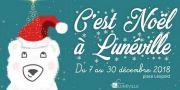 Animations et Marché de Noël à Lunéville 2018 54300 Lunéville du 07-12-2018 à 12:00 au 30-12-2018 à 19:00