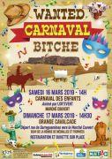 Carnaval de Bitche  57230 Bitche du 16-03-2019 à 14:00 au 17-03-2019 à 17:00