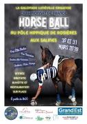 Championnat de France de Horse Ball à Rosières-aux-Salines  54110 Rosières-aux-Salines du 30-03-2019 à 09:00 au 31-03-2019 à 21:00
