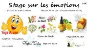 Stage sur les émotions à Fléville-devant-Nancy 54710 Fléville-devant-Nancy du 27-04-2019 à 13:45 au 27-04-2019 à 17:30
