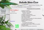 Balade Bien-Être et ateliers à Falck 57550 Falck du 14-04-2019 à 09:00 au 14-04-2019 à 16:00