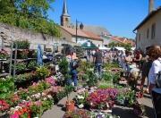 Marché aux Fleurs et à la décoration de jardin à Rodemack 57570 Rodemack du 05-05-2019 à 10:00 au 05-05-2019 à 18:00
