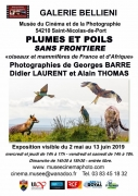 Exposition Oiseaux et Mammifères à Saint-Nicolas-de-Port 54210 Saint-Nicolas-de-Port du 02-05-2019 à 14:00 au 13-06-2019 à 17:00