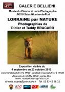 Exposition photo Lorraine par Nature à Saint-Nicolas-de-Port 54210 Saint-Nicolas-de-Port du 04-09-2019 à 14:00 au 20-10-2019 à 18:30