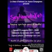 Spectacle Sentimental(e) à Puttelange-aux-Lacs 57510 Puttelange-aux-Lacs du 23-11-2019 à 20:00 au 24-11-2019 à 18:00