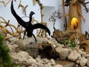 Musée des 1001 Racines à Cornimont
