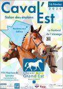 Caval'Est Salon des Etalons Grand Est Rosières-aux-Salines 54110 Rosières-aux-Salines du 16-02-2020 à 10:00 au 16-02-2020 à 17:00