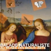Balade naturaliste au Musée des Beaux-Arts à Nancy 54000 Nancy du 26-02-2020 à 10:00 au 26-02-2020 à 11:30