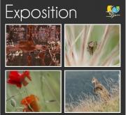 Exposition Photo, Même loisir Deux Regards à Essey-lès-Nancy 54270 Essey-lès-Nancy du 07-03-2020 à 14:00 au 15-03-2020 à 18:00