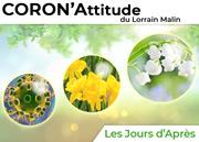 CoronAttitude : Les Jours d'Après Meurthe-et-Moselle, Vosges, Meuse, Moselle du 20-03-2020 à 10:00 au 30-04-2020 à 19:00
