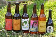 Livraison de Bière Artisanale à Toul et Nancy 54200 Toul du 05-05-2020 à 10:00 au 20-06-2020 à 19:00