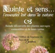 Balades Quinte et Sens à Château-Salins 57630 Haraucourt-sur-Seille du 04-07-2020 à 14:00 au 12-09-2020 à 15:00