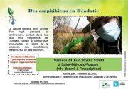 Sortie Nature Amphibiens à Saint-Dié-des-Vosges 88100 Saint-Dié-des-Vosges du 20-06-2020 à 10:00 au 20-06-2020 à 12:00