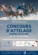 Concours Attelage à Rosières-aux-Salines 54110 Rosières-aux-Salines du 14-08-2020 à 09:00 au 16-08-2020 à 18:00