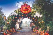 Halloween à Nigloland Nigloland 10200 Dolancourt  du 03-10-2020 à 10:30 au 15-11-2020 à 17:30