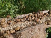 A l'Escargot Gourmand Producteur d'Escargots à Vého