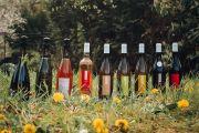 Vins des Côtes de Toul Domaine Migot à Lucey 54200 Lucey du 08-12-2020 à 10:00 au 01-03-2021 à 20:00